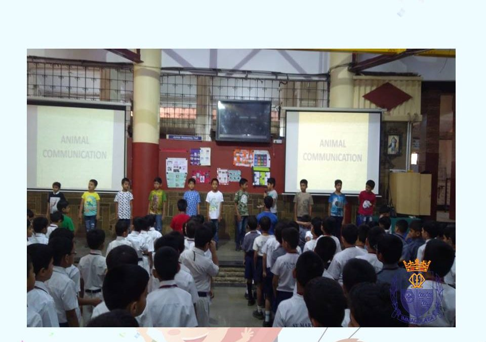 Class 3-3 Assembly